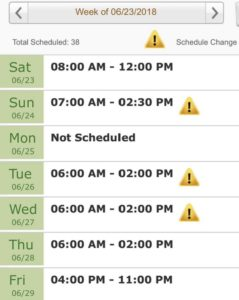 publix schedule